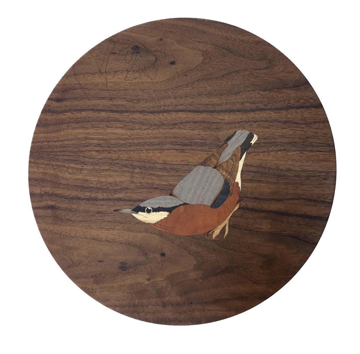 Walnut Nuthatch Bird Design